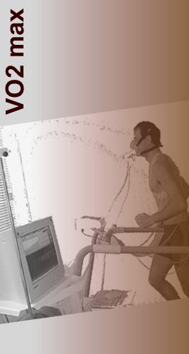 Test d 39 effort tarif - Test vo2max sur tapis roulant ...